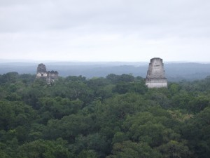Ruins coming out of the canopy at Tikal