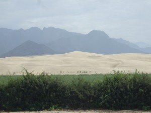 Peruvian desert Sandwich: Sky, mountains, sand dunes, cultivated land, and wind-breaking shrubs