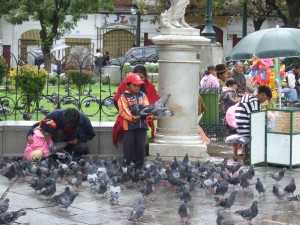 Kids feeding pigeons in the plaza